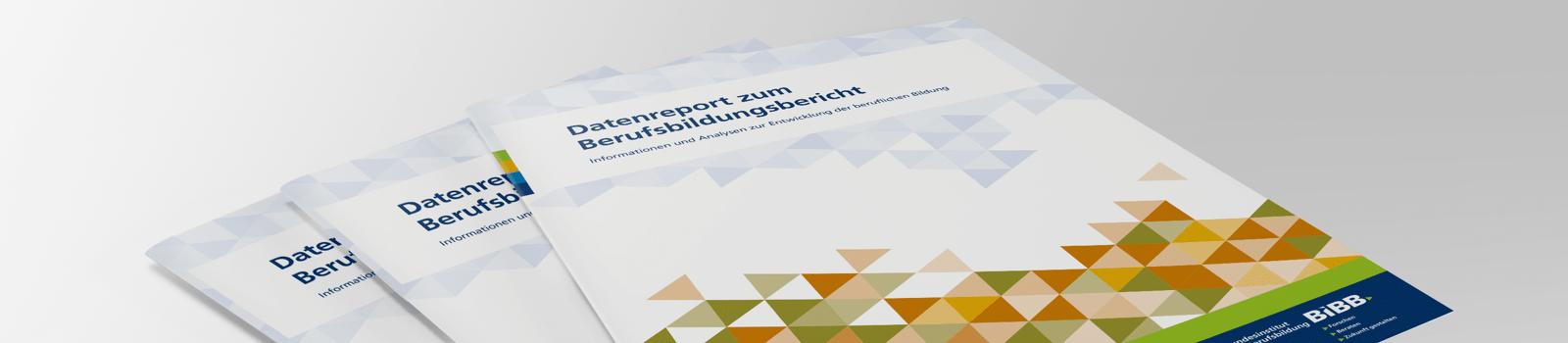 Datenreport zum Berufsbildungsbericht