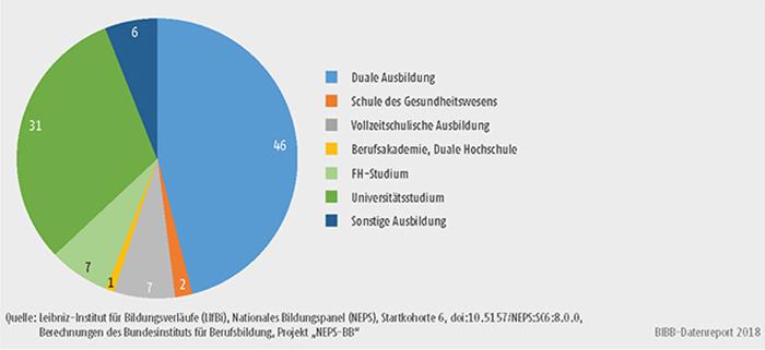 Schaubild A11.4-2: Art der begonnenen Ausbildung von Personen ohne Berufsabschluss (nfQ) (in %)