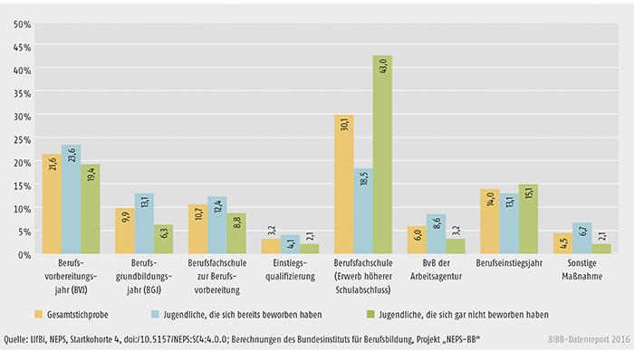 Schaubild A3.3-3: Art der besuchten Übergangsmaßnahme (in %)