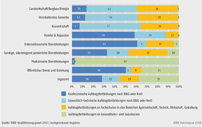 B1.2.3-3: Verteilung der Teilnehmer/-innen an Aufstiegsfortbildungen im Jahr 2017 nach Fachrichtungen und Wirtschaftszweigen (in %)