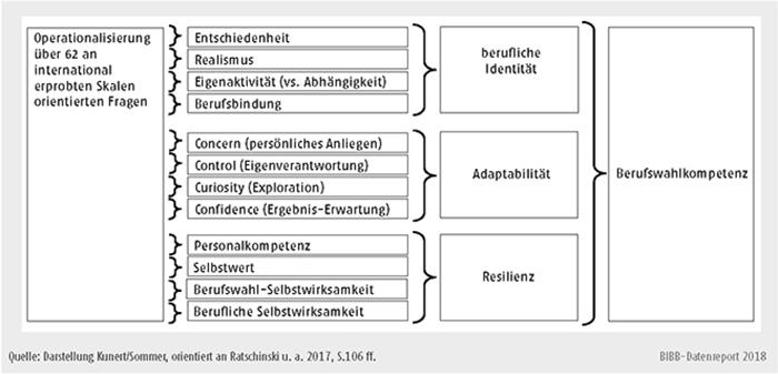 Schaubild C2.3-1: Modell der Berufswahlkompetenz