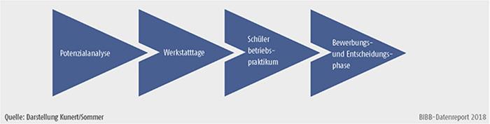 Schaubild C2.3.-2: Phasen der Berufsorientierung