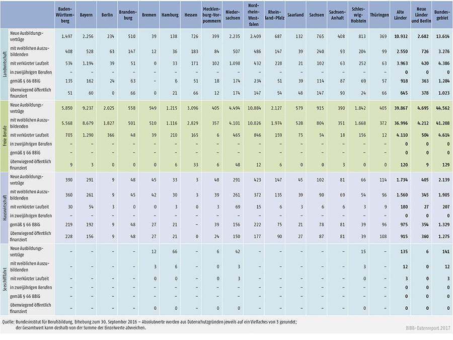 Tabelle A1.2-4: Neu abgeschlossene Ausbildungsverträge 2016 nach strukturellen Merkmalen (Teil 1 – Fortsetzung)