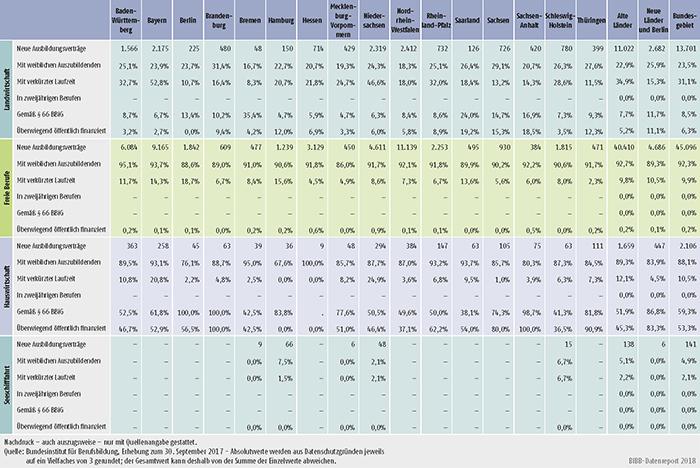 Tabelle A1.2-4: Neu abgeschlossene Ausbildungsverträge 2017 nach strukturellen Merkmalen (Anteil in %) (Teil 2 ― Fortsetzung)