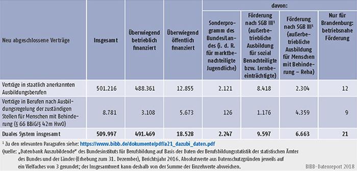 Tabelle A5.4-6: Staatlich anerkannte Ausbildungsberufe und Ausbildungsregelungen der zuständigen Stellen für Menschen mit Behinderung (§ 66 BBiG/§ 42m HwO) nach Art der Förderung, Berichtsjahr 2016