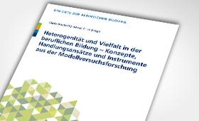 Heterogenität und Vielfalt in der beruflichen Bildung - Konzepte, Handlungsansätze und Instrumente aus der Modellversuchsforschung