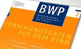Forschungsdaten aus dem BIBB