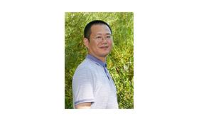Prof. Qi Zhang