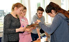 Teilnehmerinnen des Girls'Day bei der Arbeit am Computer